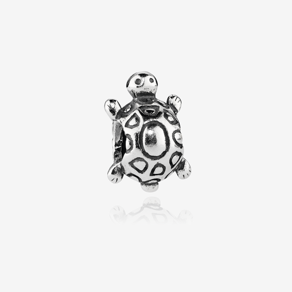 Charm  Tortuga image number null