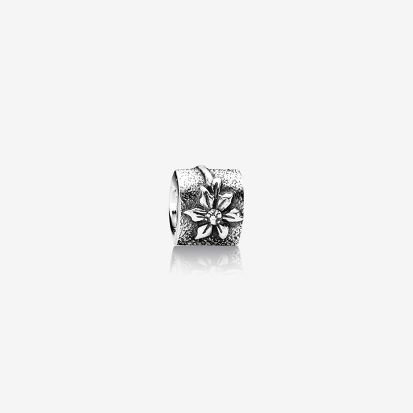 Charm  Flor de Edelweiss image number null