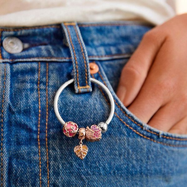 Porta Charms O Pandora Moments image number null